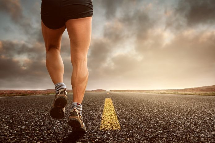 exercise and mitochondrial health