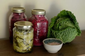 NAD and fermented foods